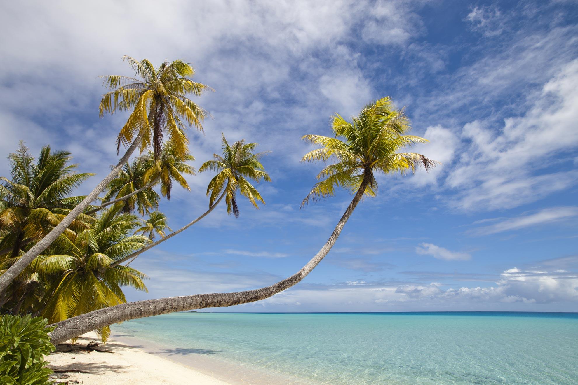 Exotic Voyages agence de voyage specialiste Nouvelle-Calédonie